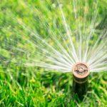 rasen-bewässerung-sprinkler